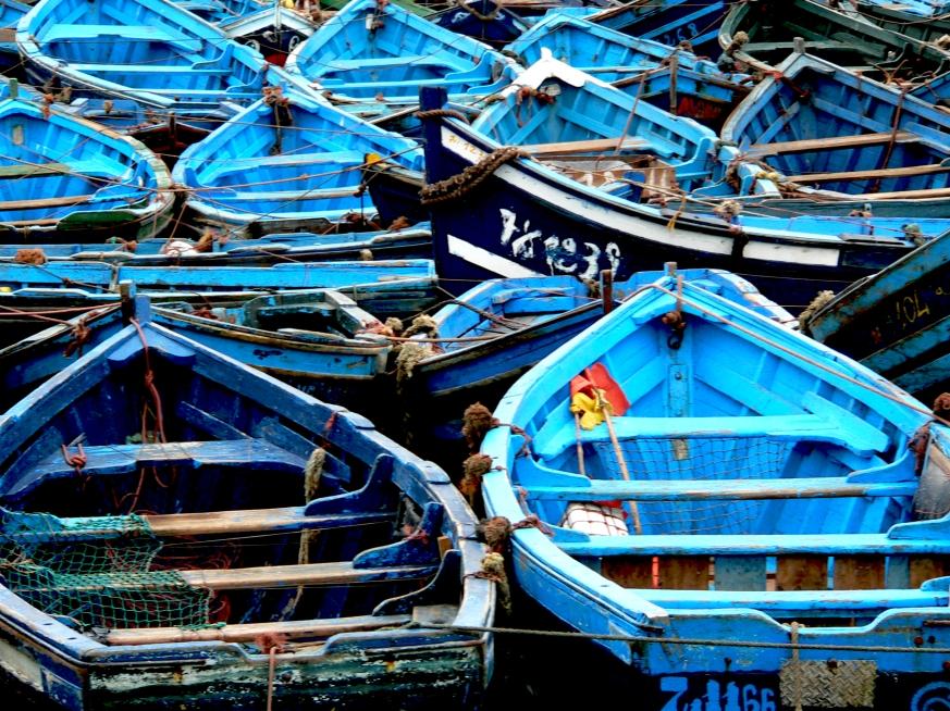 Morocco - Collioure 253