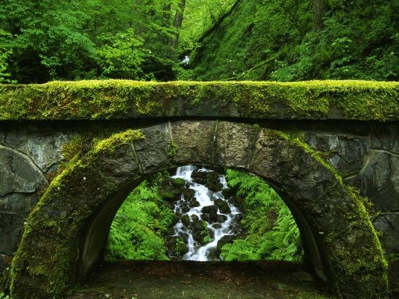 The-old-bridge
