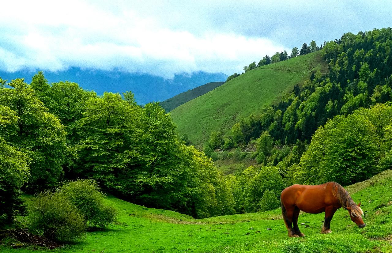 Aquitaine, Pays Basquefrançais