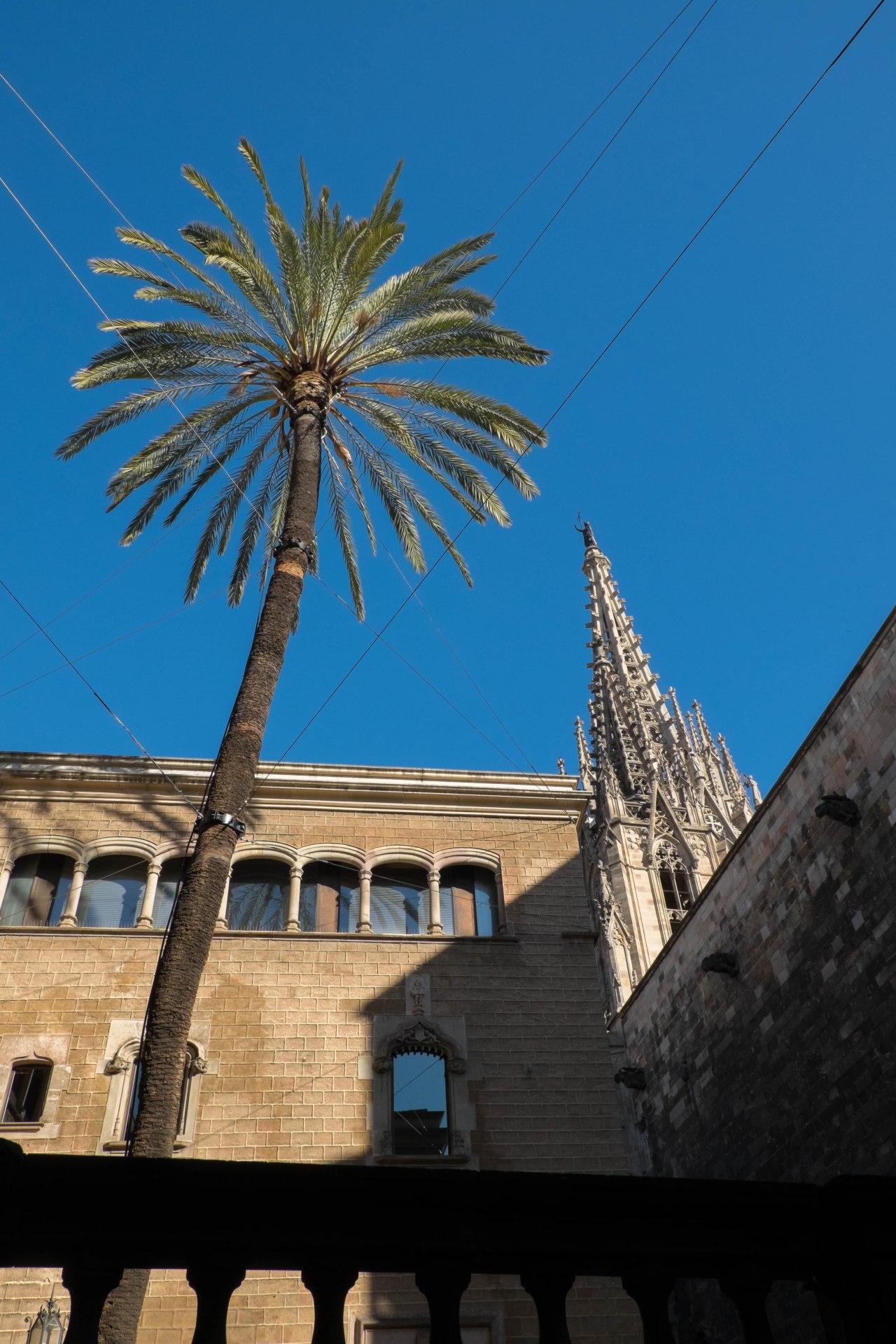 Casa de l'Ardiaca, un bello rincón en el góticobarcelones