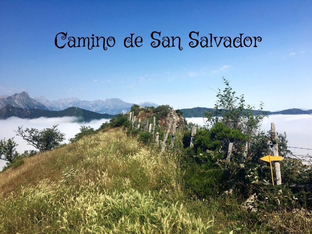 Camino de San Salvador, desde León aOviedo
