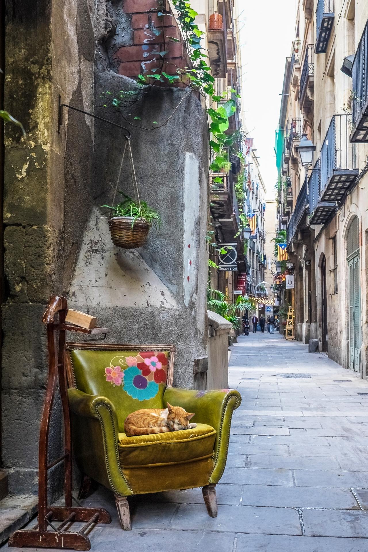 La Barcelona que yoamo