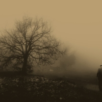 Camino hacia la soledad