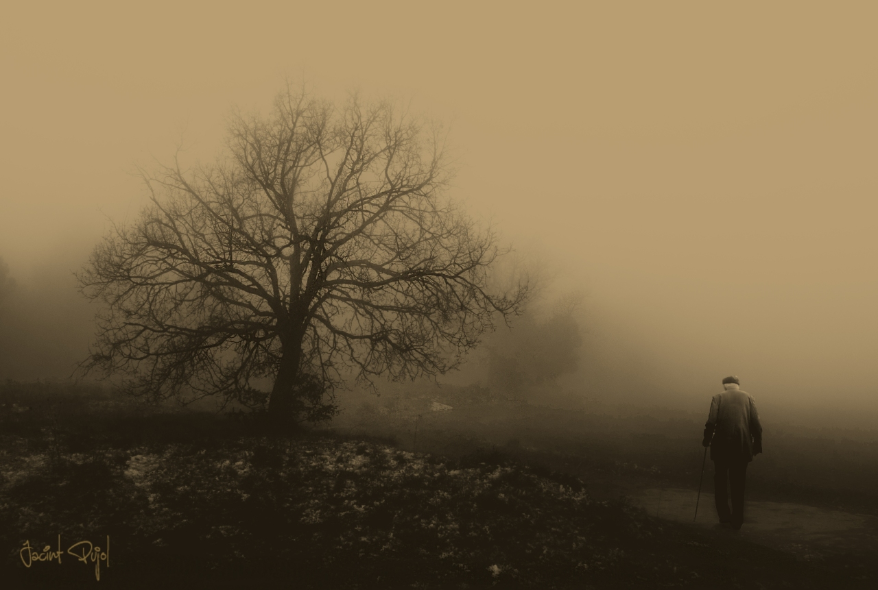 Camino hacia lasoledad