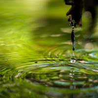 La gota que colmó el estanque