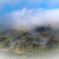 Niebla de verano en el Montseny