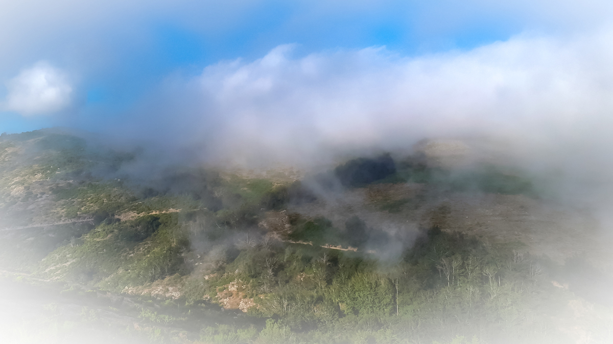 Niebla de verano en elMontseny