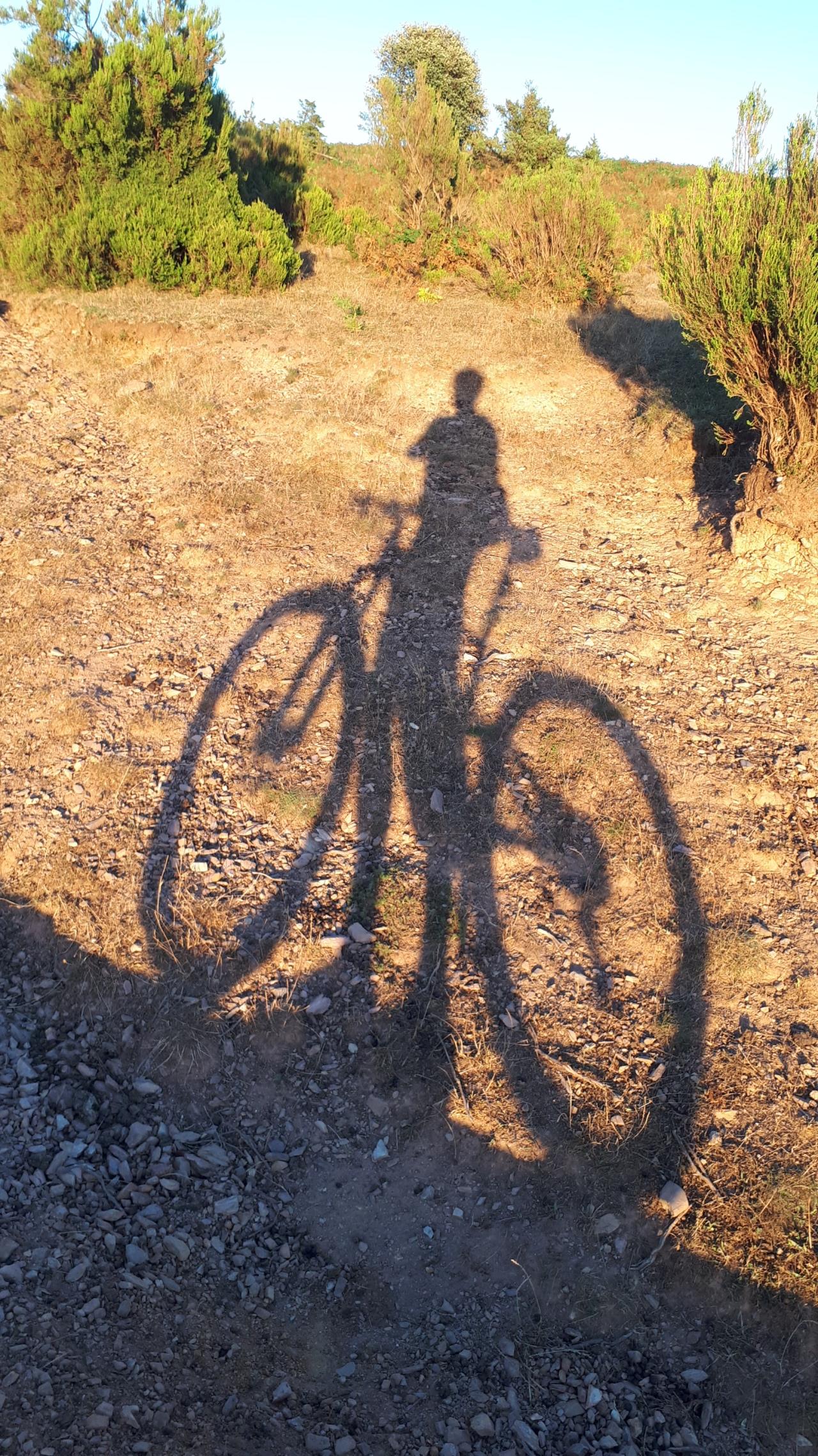 (Vídeo) Mi sombra y yo pedaleando juntos en la puesta desol