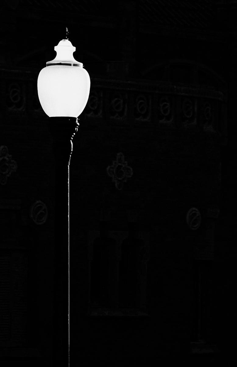 Iluminada por la puesta desol