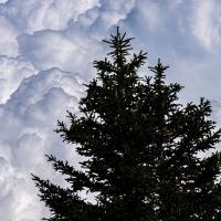 Por las nubes